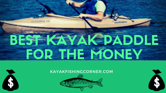 Best Kayak Paddle for the Money