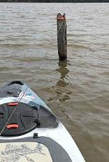 Kayak Brush Gripper