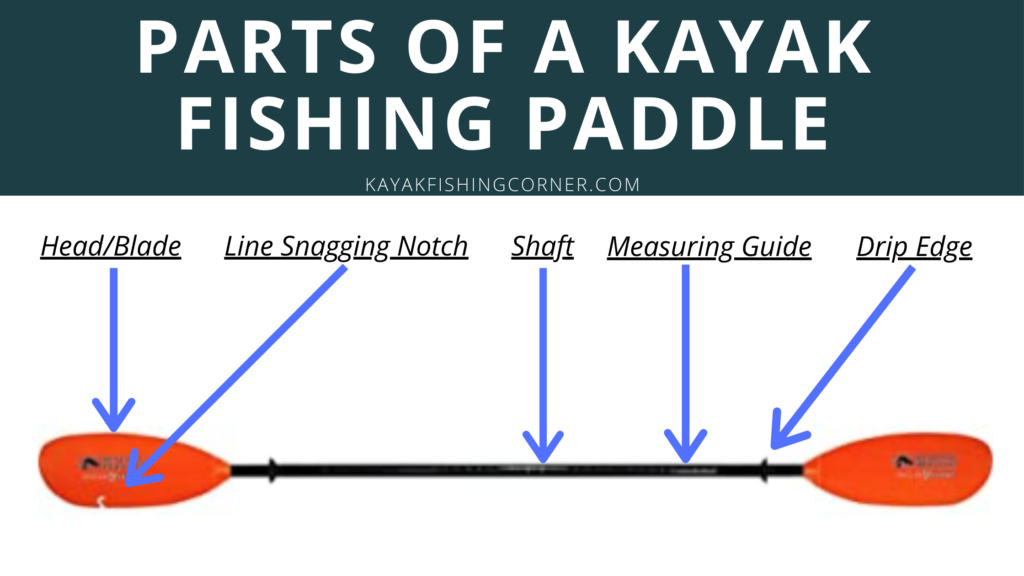 Parts of a Kayak Fishing Paddle